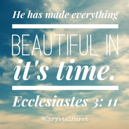 He has made everything beautiful.