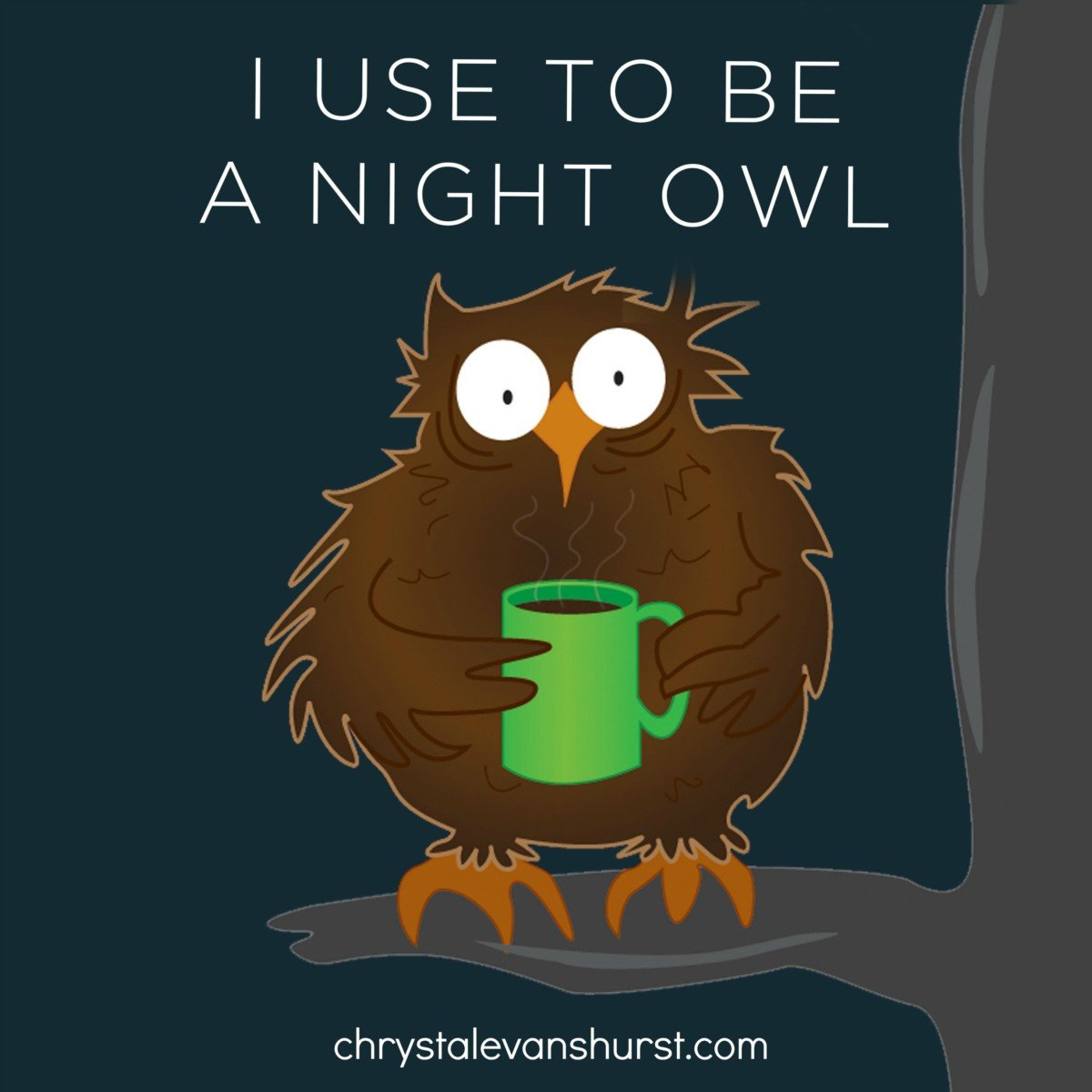 a reality of getting older i used to be a night owl chrystal a reality of getting older i used to be a night owl chrystal evans hurst