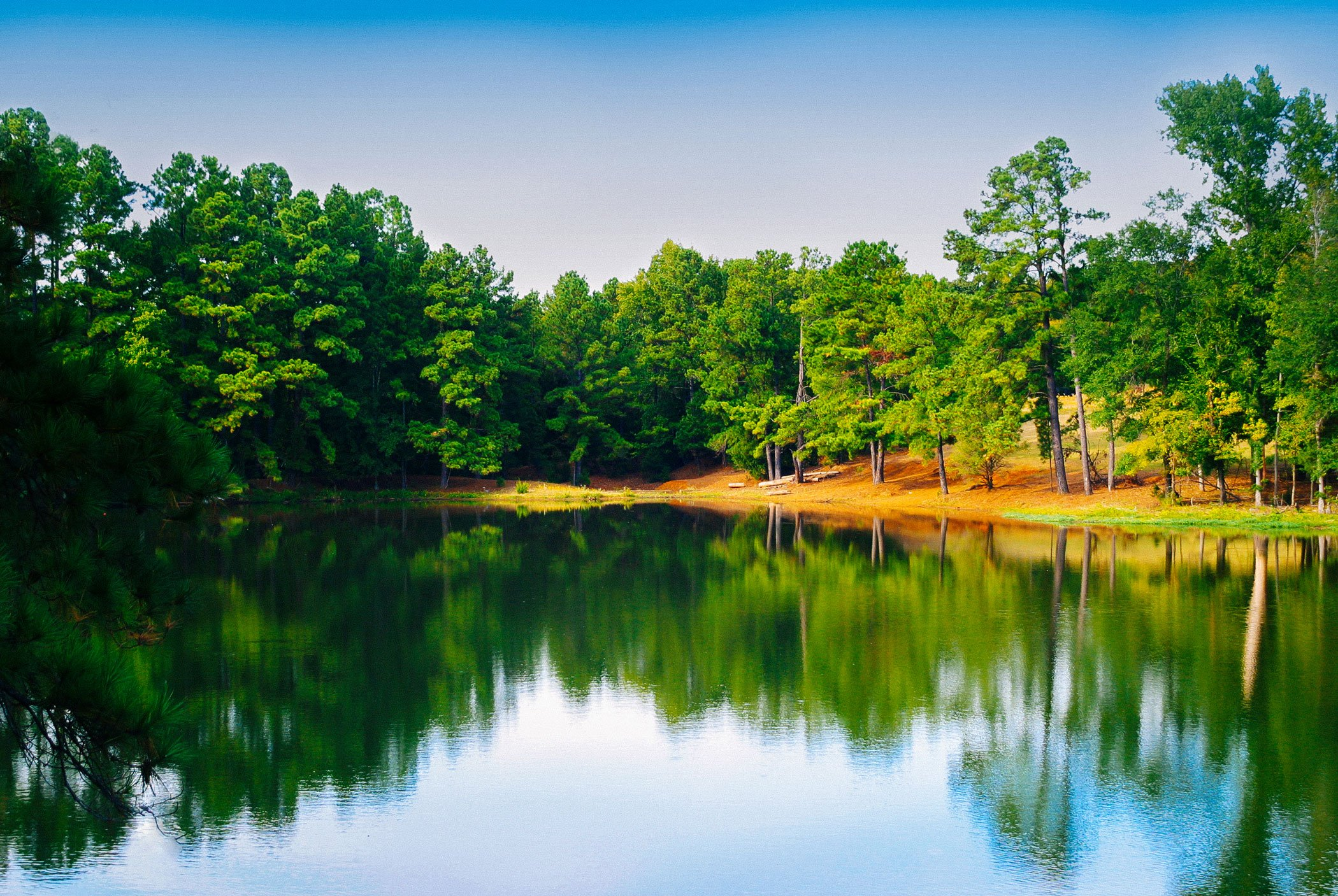 familycamp-woods-lake